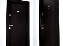 Uși intrare